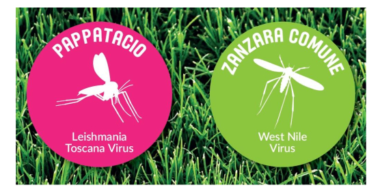 Incontro informativo su LEISHMANIA e WEST NILE VIRUS